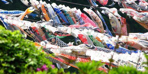 Koinobori Festival Anak Super Meriah