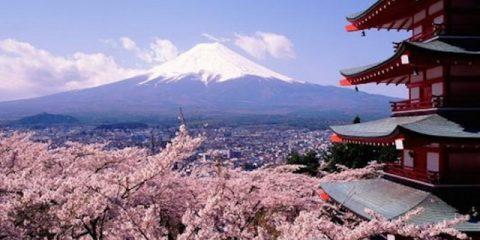 Musim Terbaik Untuk Datang ke Jepang